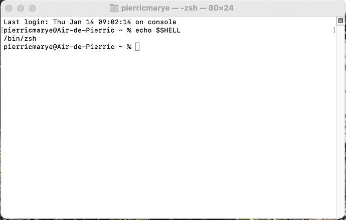 Capture d'écran 2021-01-14 à 09.09.10