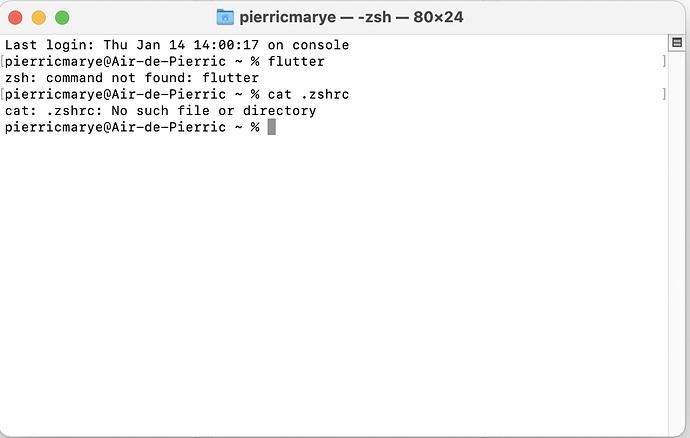 Capture d'écran 2021-01-14 à 14.03.43